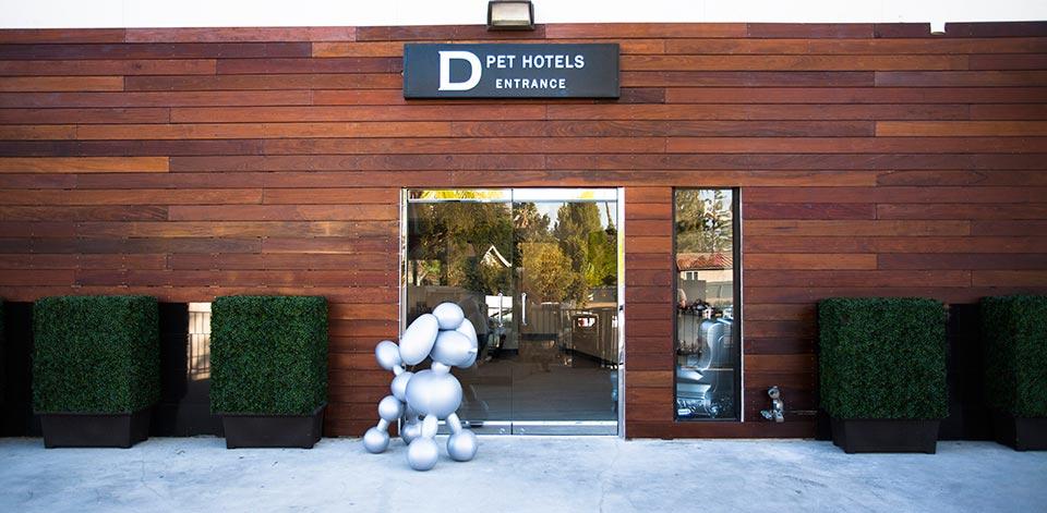 D Dog Hotel Dog Boarding Lo...